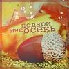 http://tritroichki.narod.ru/avatar/autumn/autumn58.png