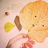 http://tritroichki.narod.ru/avatar/autumn/autumn91.png