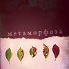 http://tritroichki.narod.ru/avatar/autumn/autumn94.png