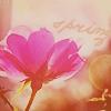 http://tritroichki.narod.ru/avatar/spring/vesna9.png