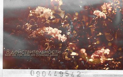 http://tritroichki.narod.ru/grafica/blends/blend66.png