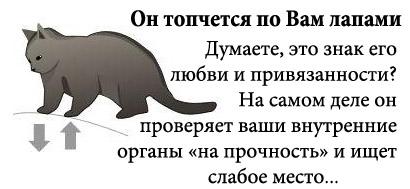 http://tritroichki.narod.ru/humor/2.jpg
