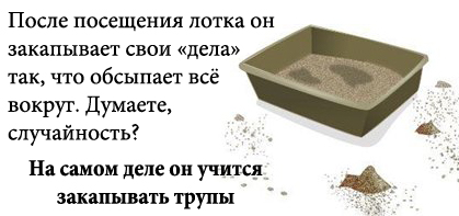http://tritroichki.narod.ru/humor/3.jpg