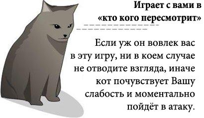 http://tritroichki.narod.ru/humor/4.jpg