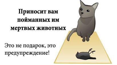 http://tritroichki.narod.ru/humor/5.jpg