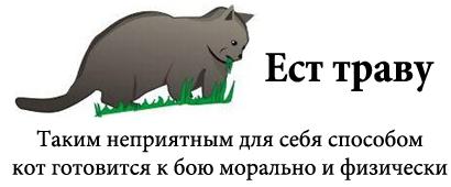 http://tritroichki.narod.ru/humor/6.jpg